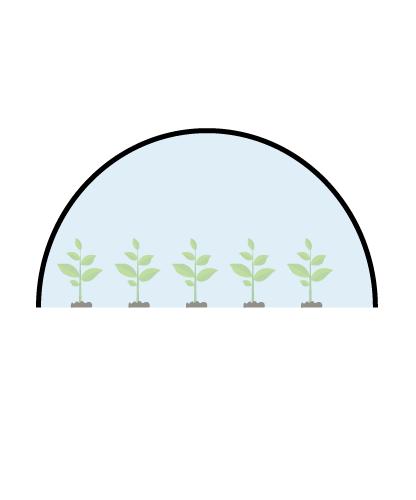 فرم انواع گلخانه تونلی