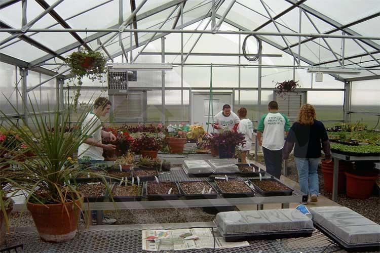 گلخانهی آموزشی-نهال رویش