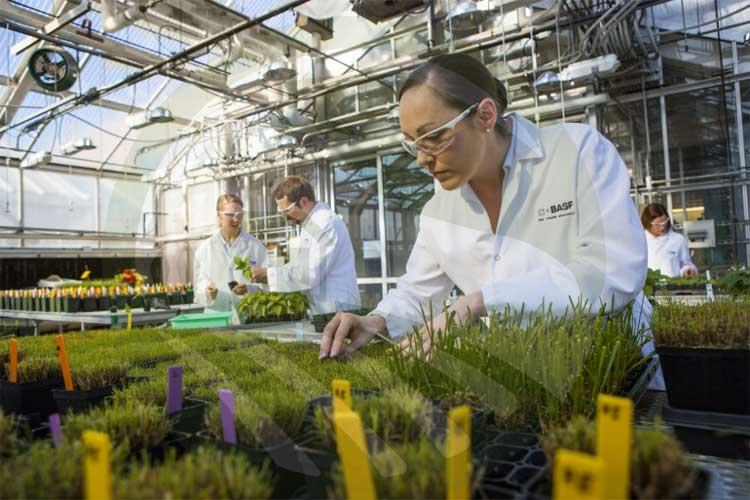 گلخانه های تحقیقاتی-nahalrouyesh