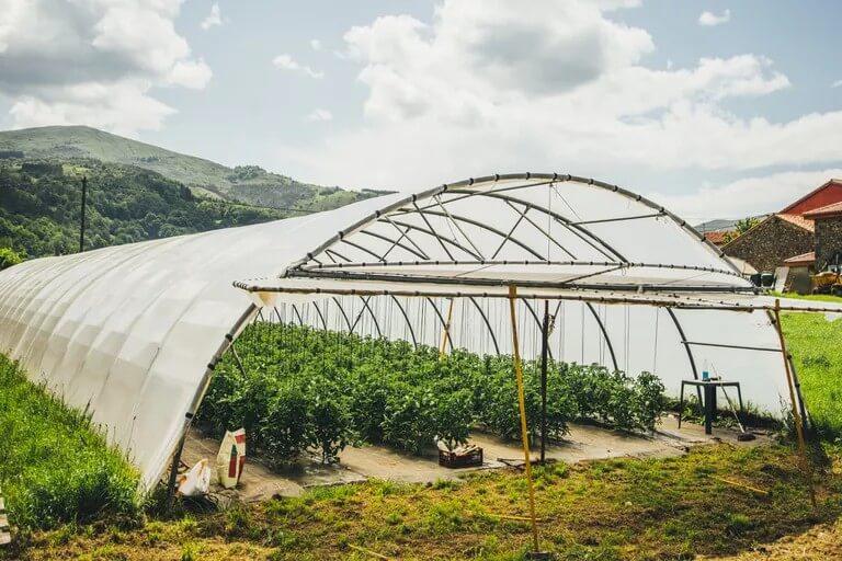 نمونه ایی از گلخانه های تونلی