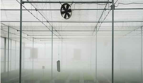 سیستم فوگر در گلخانه