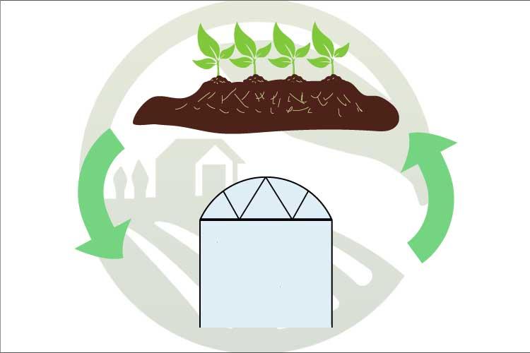 آزادسازی زمین ها برای گیاهان استراتژیک