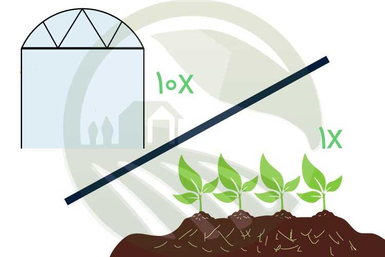 افزایش میزان تولید محصول در گلخانه نسبت به مزرعه و افزایش درآمد گلخانه