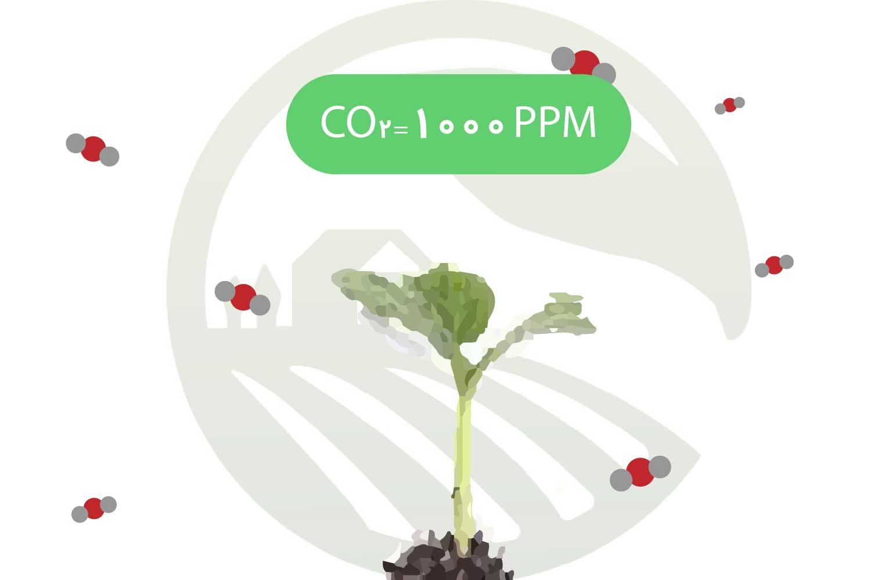 میزان کربن دی اکسید مورد نیاز برای خیار گلخانه ای