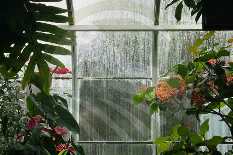 پوشش شیشه ای گلخانه