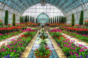 بزرگترین گلخانه جهان