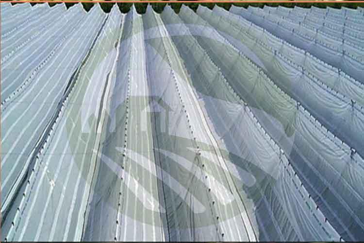 تیپ سایبان V شکل محافظ در برابر باران- نهال رویش
